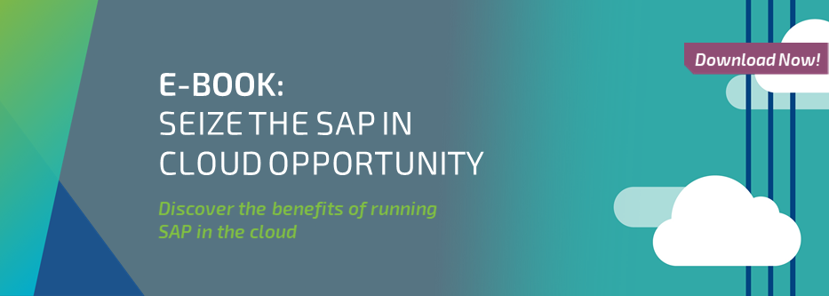 E-BOOK: SEIZE THE SAP IN CLOUD OPPORTUNITY