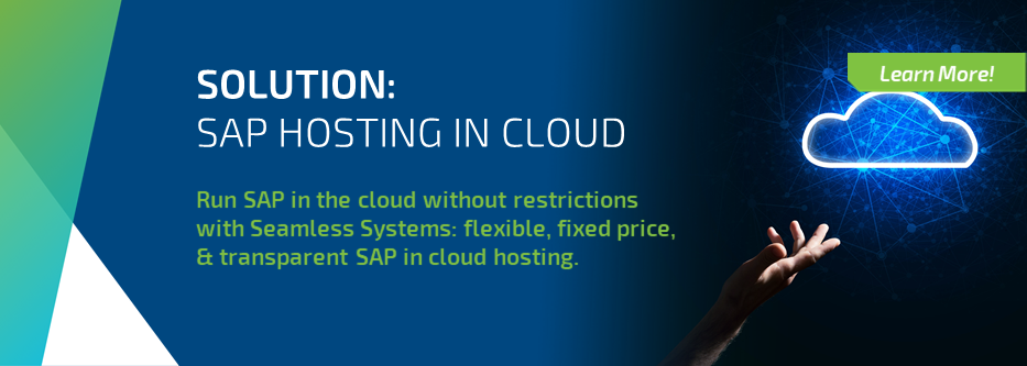Learn more about Seamless Systems SAP Hosting in the Public Cloud