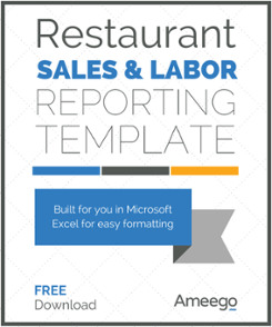 Sales and Labor Reporting Template