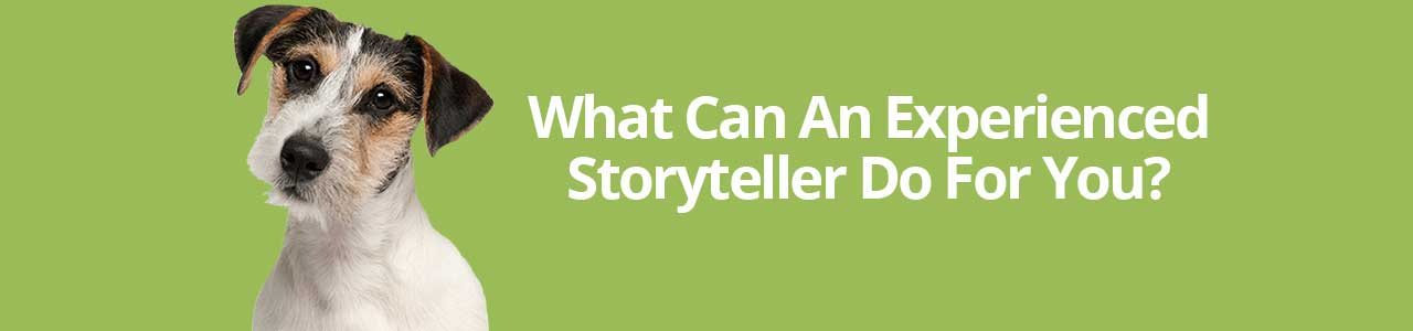 What Can An Experienced Storyteller Do For You?