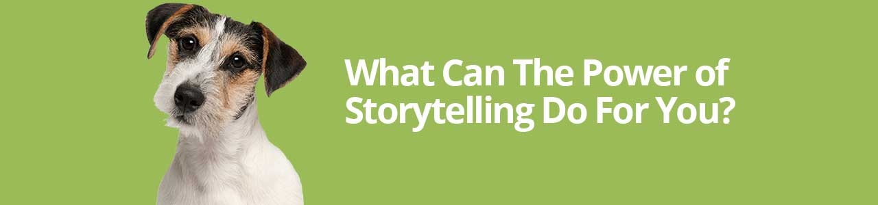 What Can the Power of Storytelling Do For You?