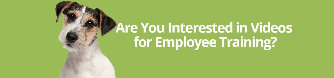 Are You Interested in Videos for Employee Training?