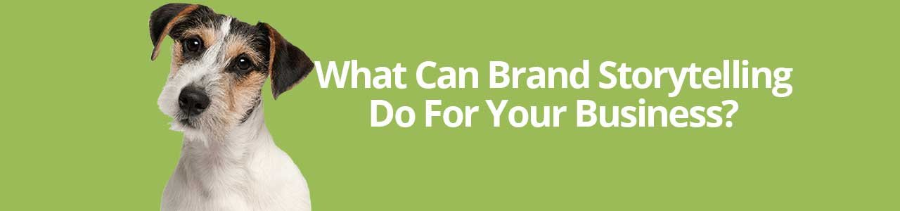 What Can Brand Storytelling Do For Your Business?