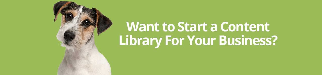Want to Start a Content Library For Your Business?