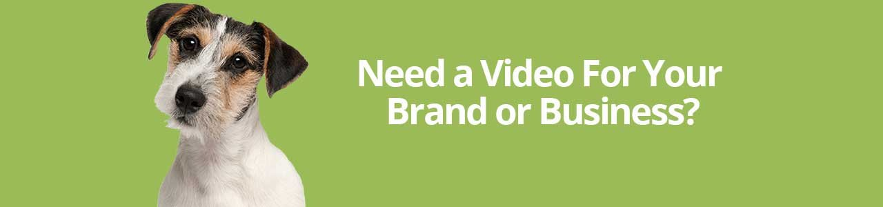 Need a Video for Your Brand or Business?