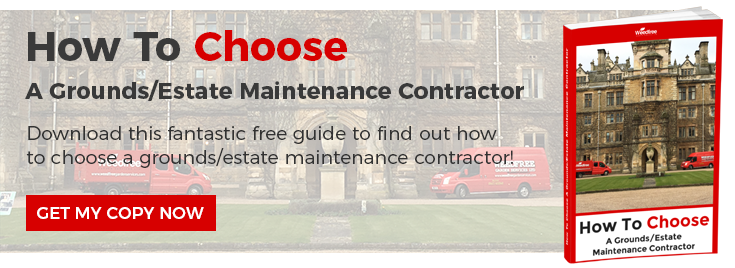How To Choose A Grounds/Estate Maintenance Contractor - Long