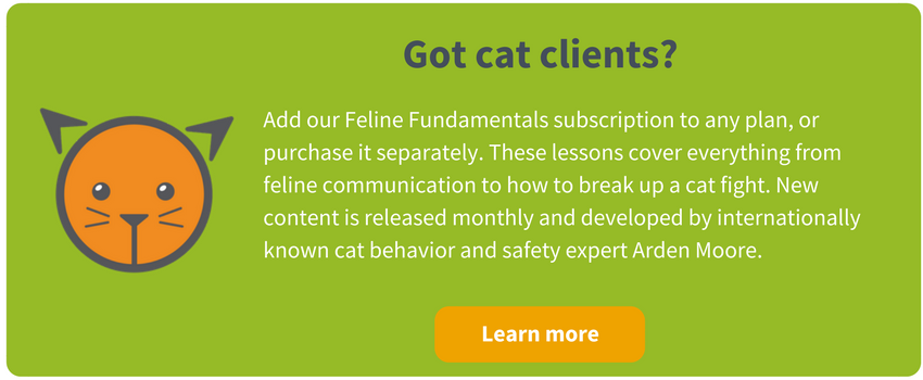 Feline Fundamentals