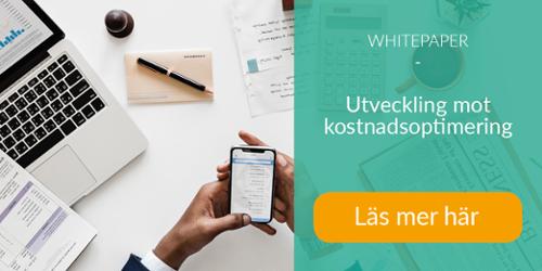 Whitepaper | Kostnadsoptimering