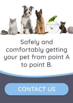 Contact-My-Pet-Cab