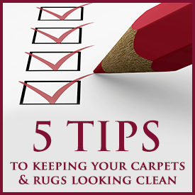 5 carpet cleaning tups
