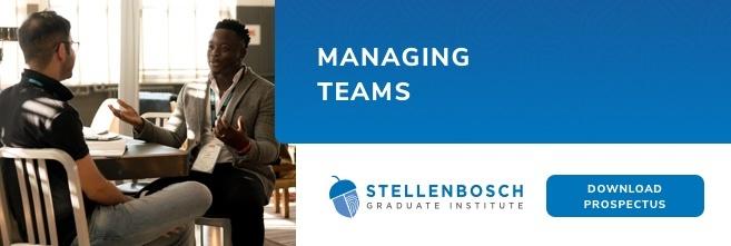 SGI Managing Teams