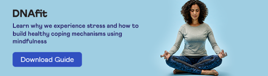 Download our Guide to Stress, Mindfulness and Meditation