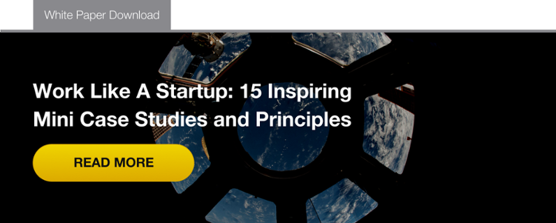 Work like a Startup: 15 Inspiring Mini Case Studies and Principles