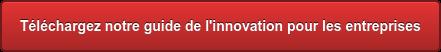 Téléchargez notre guide de l'innovation pour les entreprises