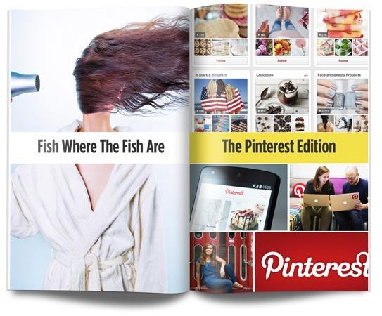 Pinterest (download from blog)