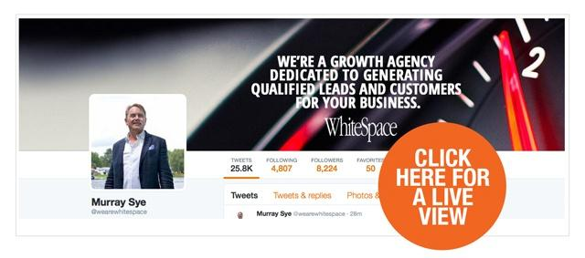 WhiteSpace Twitter Header as a CTA
