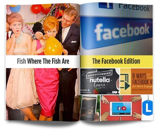 Facebook (download from blog)