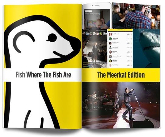 Meerkat (download from blog)