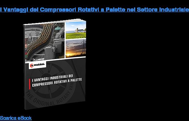 I Vantaggi dei Compressori Rotativi a Palette nel Settore Industriale Scarica eBook