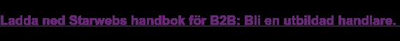 Ladda ned Starwebs handbok för B2B e-handel