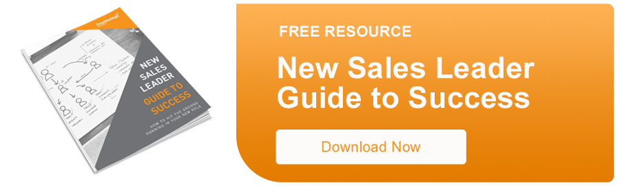 Download Now - New Sales Leader Guide to Success