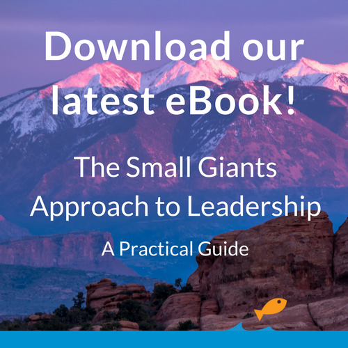 Small Giants Approach to Leadership - A Practical Guide eBook