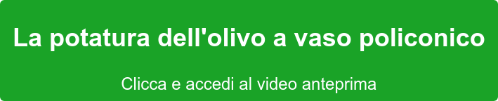 La potatura dell'olivo a vaso policonico Clicca e accedi al video anteprima