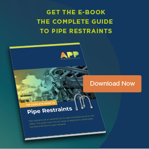 Download The Complete Guide to Pipe Restraints