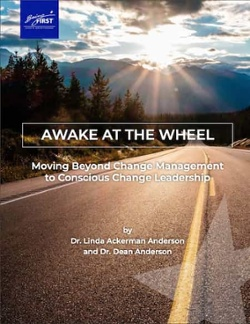 Awake at the Wheel: Moving Beyond Change Management to Conscious Change Leadership