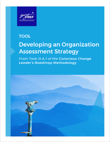 Download the Tool: Developing an Organization Assessment Strategy