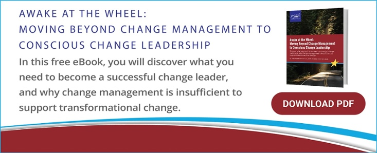 eBook: Awake at the Wheel: Moving Beyond Change Management to Conscious Change Leadership