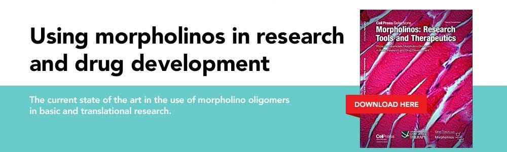 Download Morpholinos: Research Tools and Therapeutics