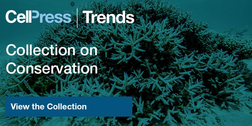 View the Trends collection on conservation