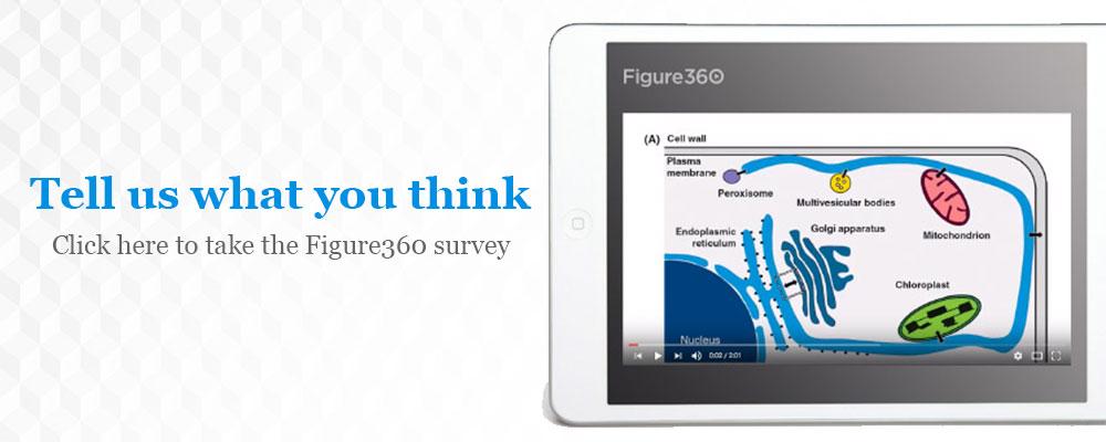 Take the Figure360 survey
