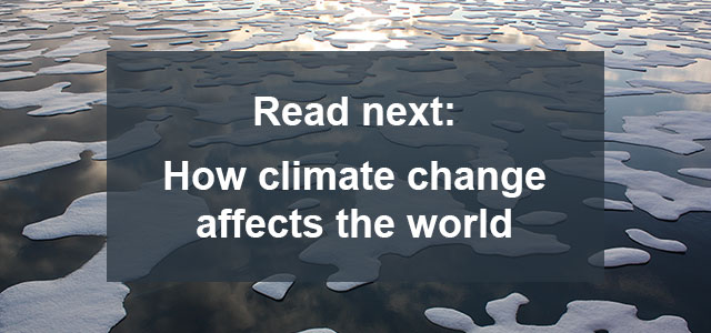 How climate change affects the world