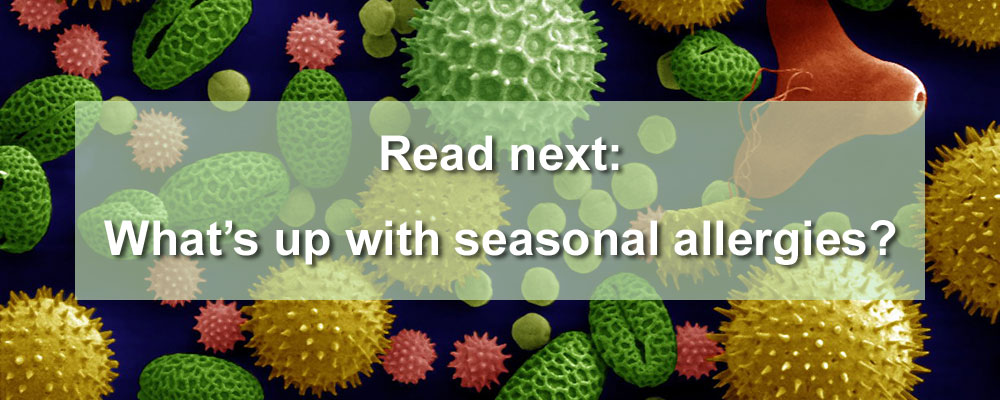 What's up with seasonal allergies?
