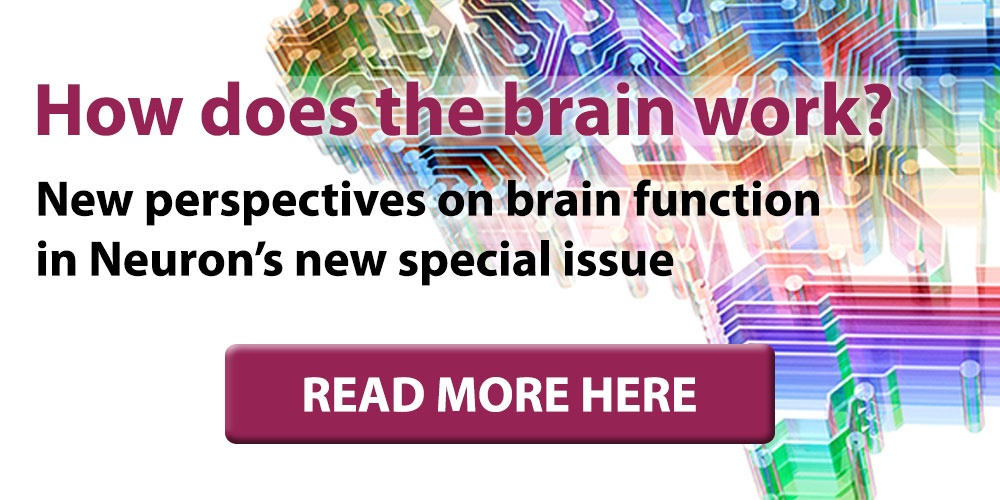 Get Neuron's special issue on how the brain works