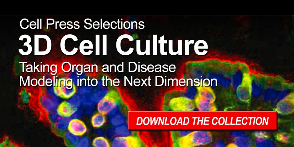 3D Cell Culture: Taking Organ and Disease Modeling into the Next Dimension
