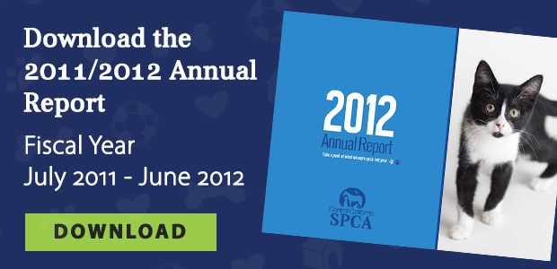 Download the 2011-2012 Annual Report