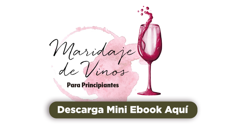 Descargar Mini Ebook