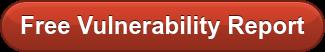 Free Vulnerability Report