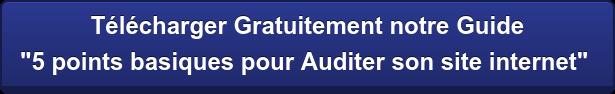 """Télécharger Gratuitement notre Guide """"5 points basiques pour Auditer son site internet"""""""
