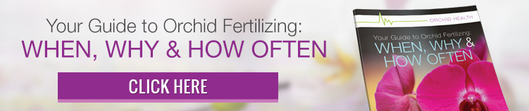 Download Your guide to Orchid Fertilizing