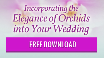 Wedding Orchids Guide