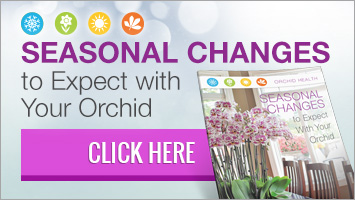 Download the Seasonal Changes to Expect with Your Orchid Guide