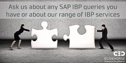 Ask us about any SAP IBP queries you have or about our range of IBP services