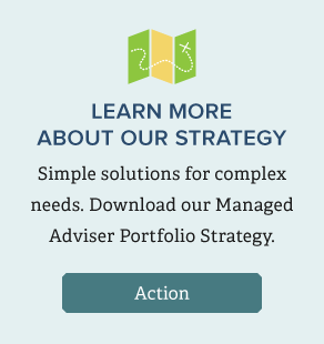 Download our management adviser portfolio strategy