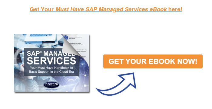 Get Your Must Have SAP Managed Services eBook here!