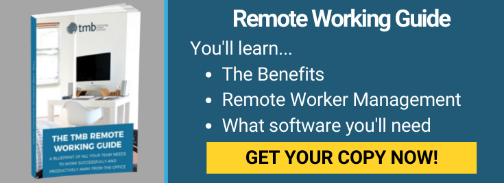Remote Working Guide Long CTA