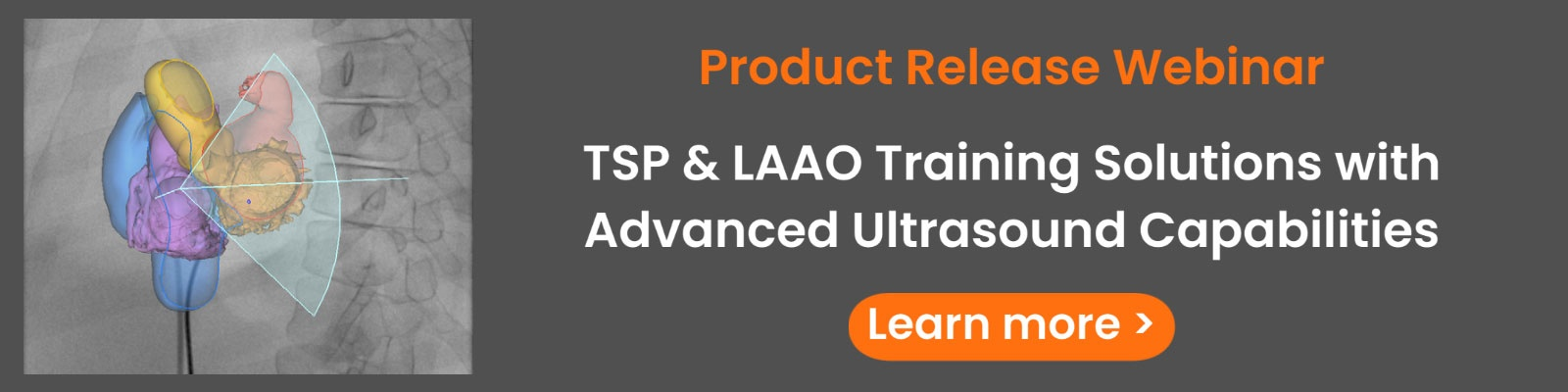 See the new TSP & LAAO simulation software >